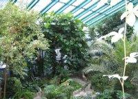 Зимний сад - все аспекты...