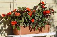 Балконные ящики для цветов